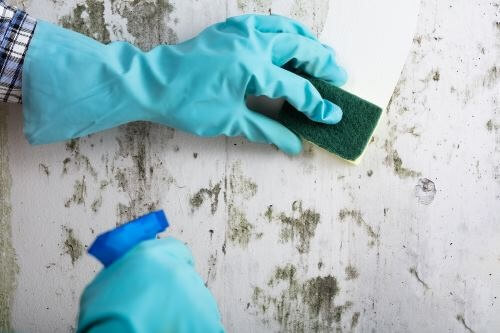 best house deep cleaning services