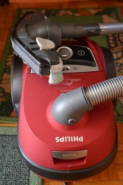 steam carpet cleaning lynnwood wa