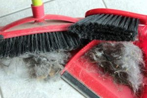 deep cleaning services in lynn